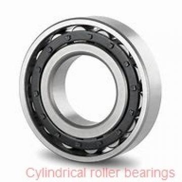 1.654 Inch | 42 Millimeter x 72 mm x 0.748 Inch | 19 Millimeter  SKF RNU 306  Cylindrical Roller Bearings