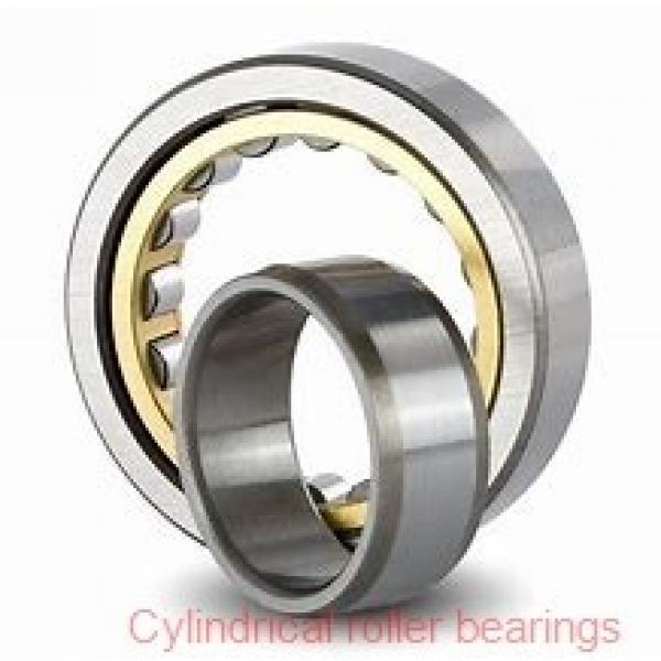 3.74 Inch | 95 Millimeter x 6.693 Inch | 170 Millimeter x 1.693 Inch | 43 Millimeter  SKF NU 2219 ECJ/C3  Cylindrical Roller Bearings #1 image