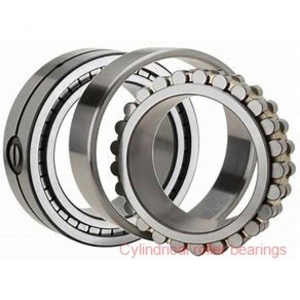 1.772 Inch | 45 Millimeter x 3.937 Inch | 100 Millimeter x 0.984 Inch | 25 Millimeter  LINK BELT MU1309UM  Cylindrical Roller Bearings #1 image