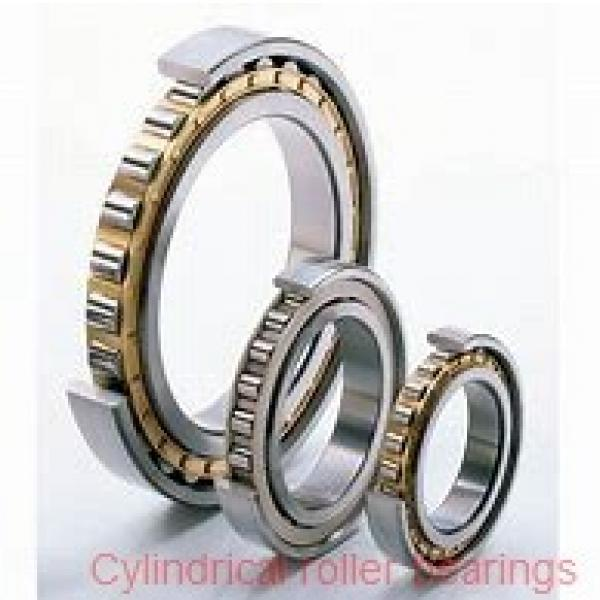 3.74 Inch | 95 Millimeter x 6.693 Inch | 170 Millimeter x 1.693 Inch | 43 Millimeter  SKF NU 2219 ECP/C3  Cylindrical Roller Bearings #1 image